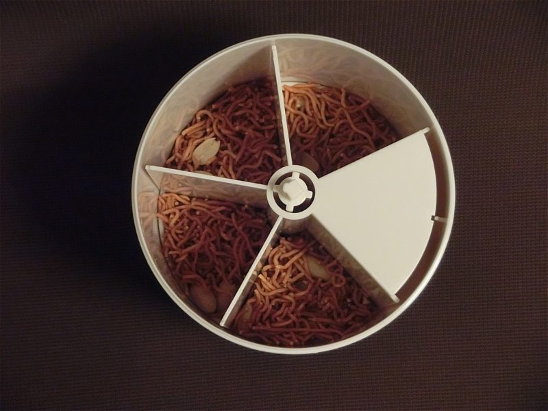 babystar-noodle-04-24