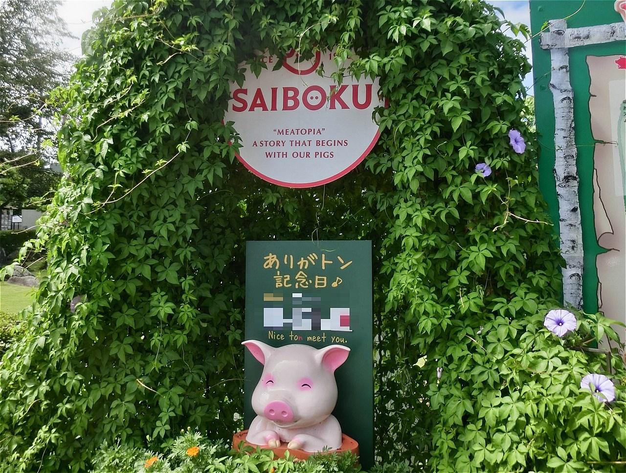 saiboku-restaurant-00